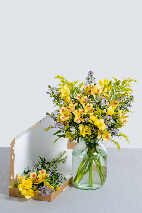 Alternative easter gifts - Flowers that bloom all year round ...